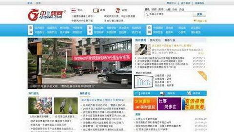 中国信鸽网