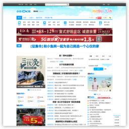 漳州小魚網