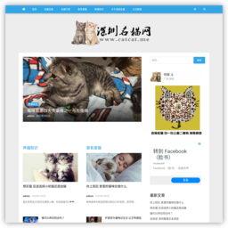 深圳名猫网