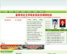 岳西縣人民政府網