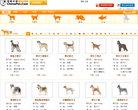 寵物中國狗狗品種