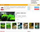 阿邦網熱帶魚專欄